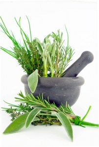 For the Love of Rosemary